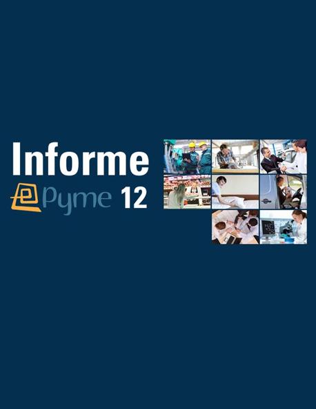Informe ePyme 2012